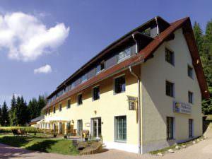 Waldhotel am Aschergrabens, Hotel in Geising bei Dresden