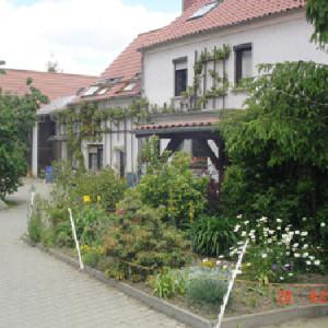 Pension Ferien-Reiterhof Wöllnau, Pension in Doberschütz