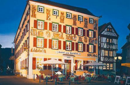 zum Karpfen, Pension in Eberbach bei Schwarzach