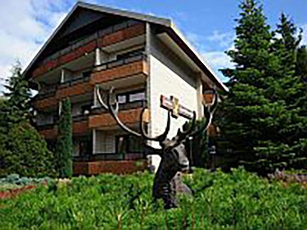Bad Bevensen: Hotel Zum Goldenen Hirsch