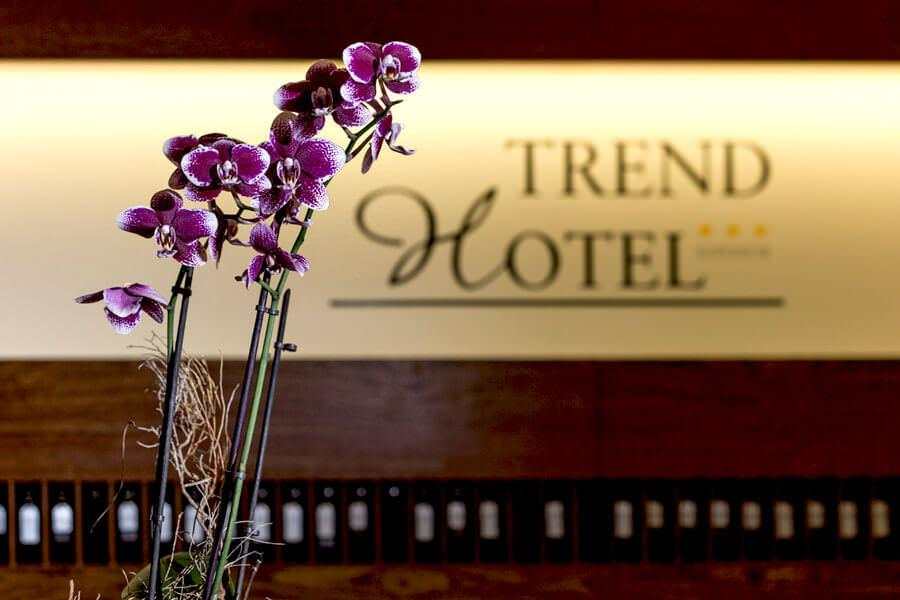 Trend Hotel Banzkow***Superior