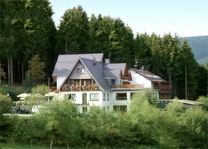 Wald Hotel Willingen***superior