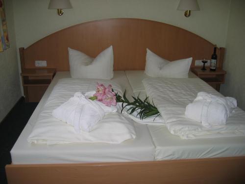 Aschaffenburg: Hotel Goldener Karpfen