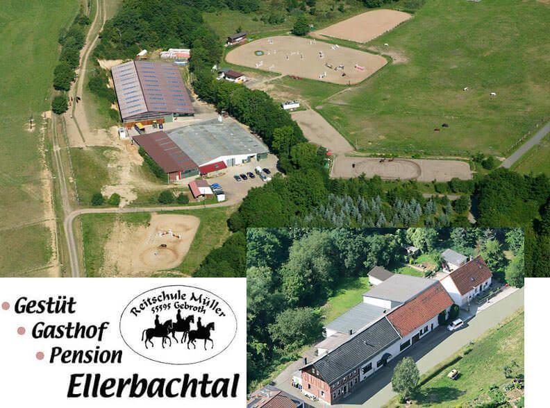 Gasthof-Gestüt Pension Ellerbachtal, Pension in Gebroth bei Hüffelsheim