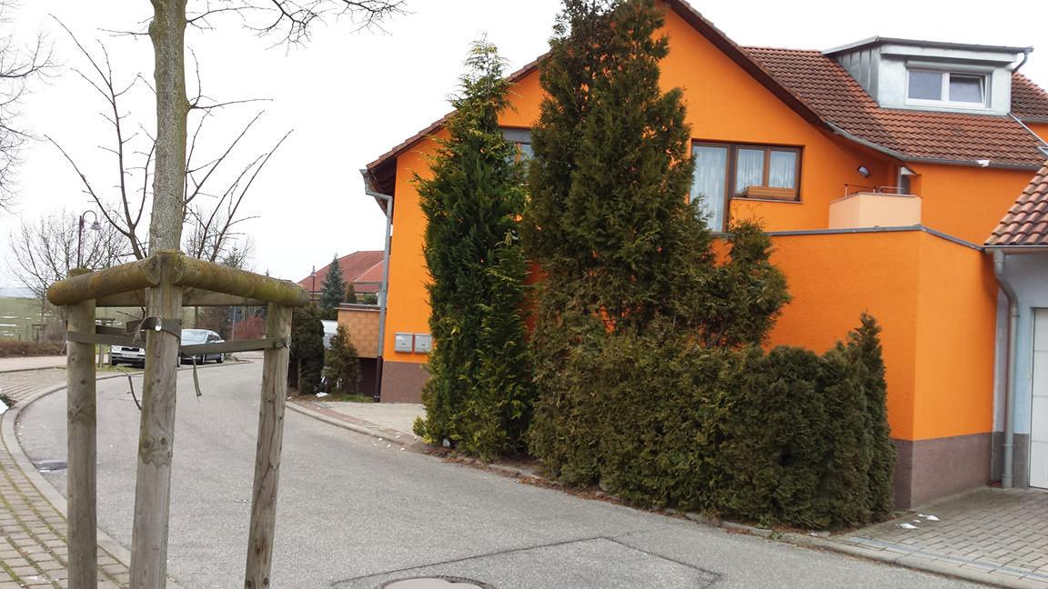 Haus Schumacher Neulingen, Appartement in Neulingen-Bauschlott bei Neckarsteinach