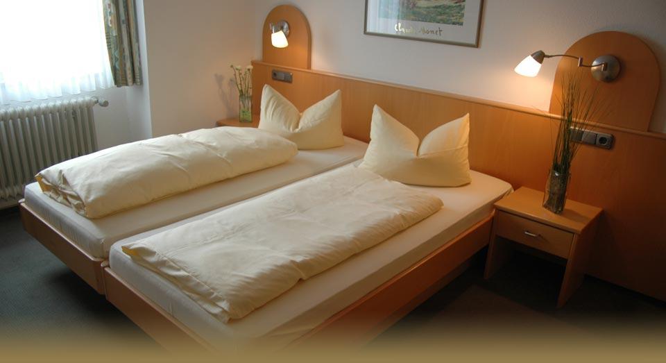 Hotel Restaurant Adler , Hotel in Immenstaad bei Frickingen