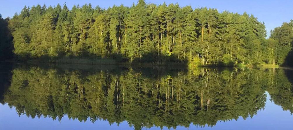 Feuchtwangen: Landgasthof-Pension Am Forst