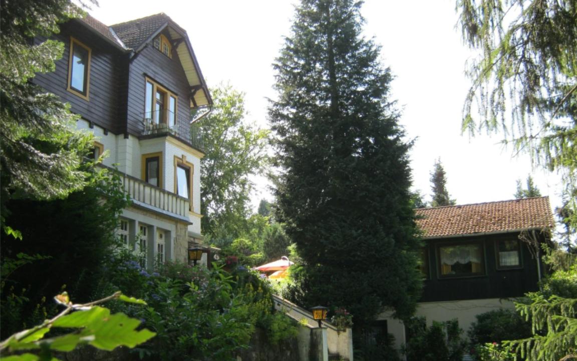 Hotel Waldfrieden, Hotel in Bad Sachsa bei Pöhlde