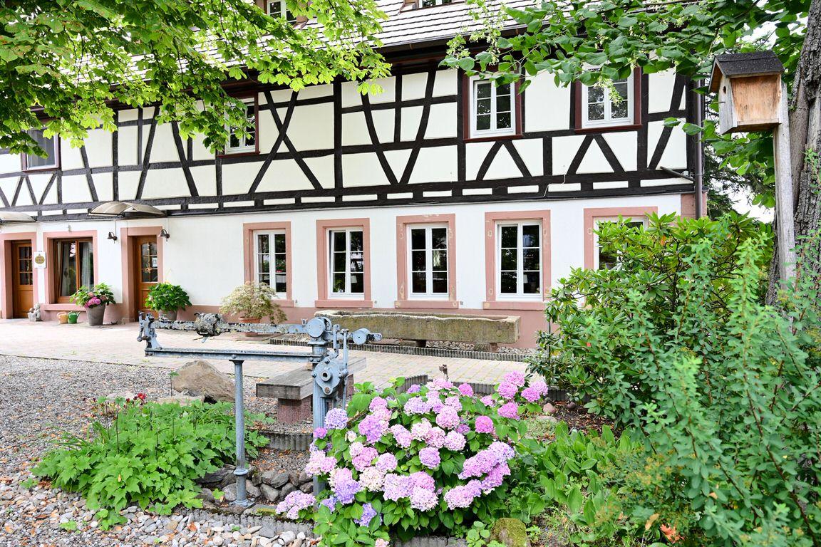 Boutique-Hotel Krone, Hotel in Denzlingen bei Freiburg im Breisgau
