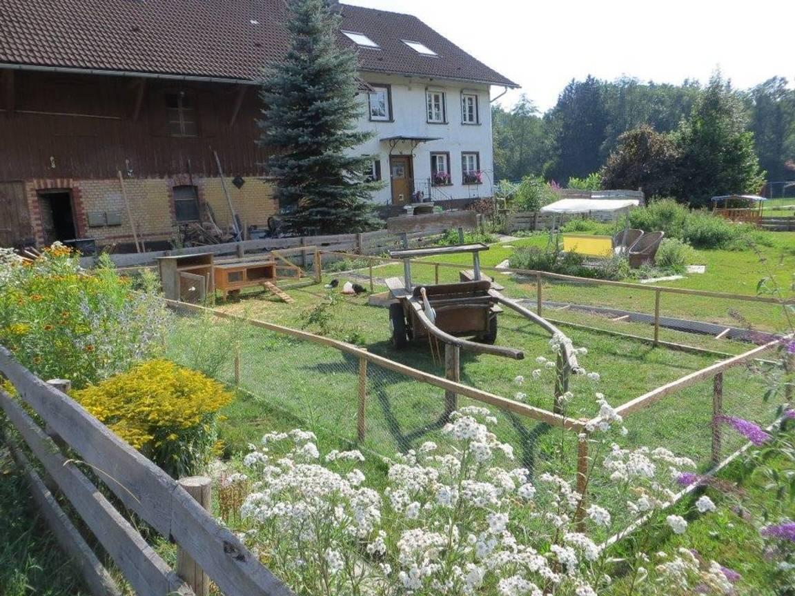 Ferienwohnung Nelson, Monteurzimmer in Wangen im Allgäu bei Kressbronn