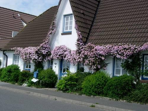 Pension Nis Puk, Pension in Nordstrand bei Bredstedt