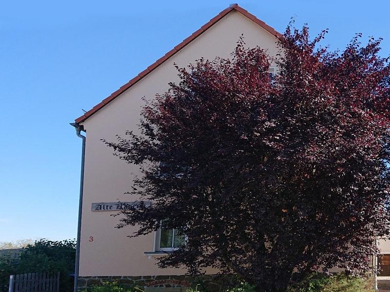 Grimma: Ferienhaus Alte Käserei