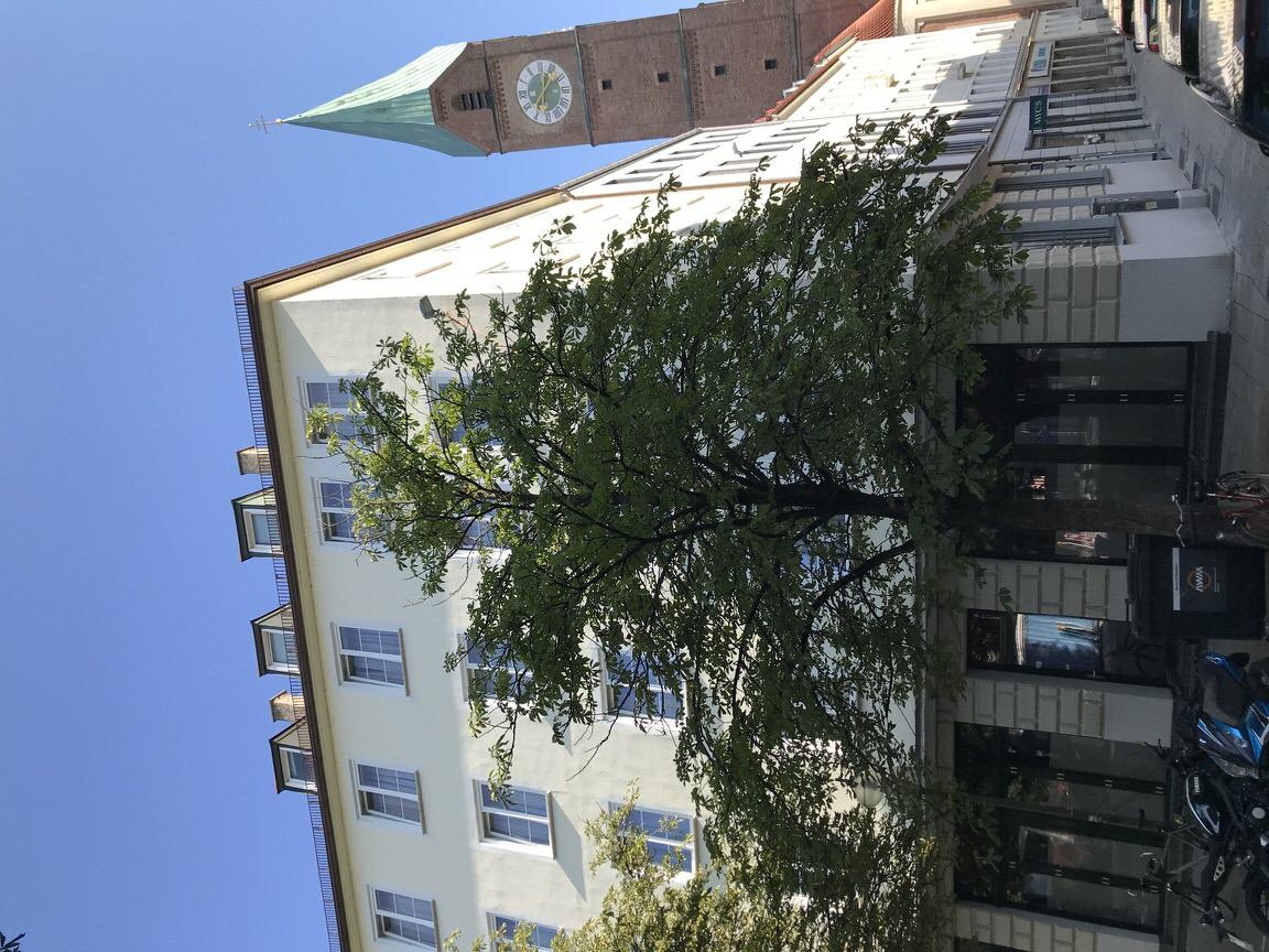 Hotel Der Tannenbaum, Monteurzimmer in München